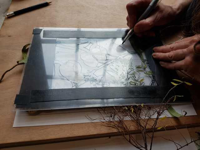 leren werken met een frame tijdens de teken cursus tekenen met de rechter hersen helft